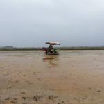 Tỉnh Bắc Ninh hỗ trợ mua máy nông nghiệp và máy cấy lúa